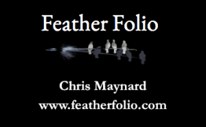 Feather Art Natural Feathers