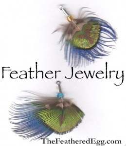 the feathered egg feather jewelry